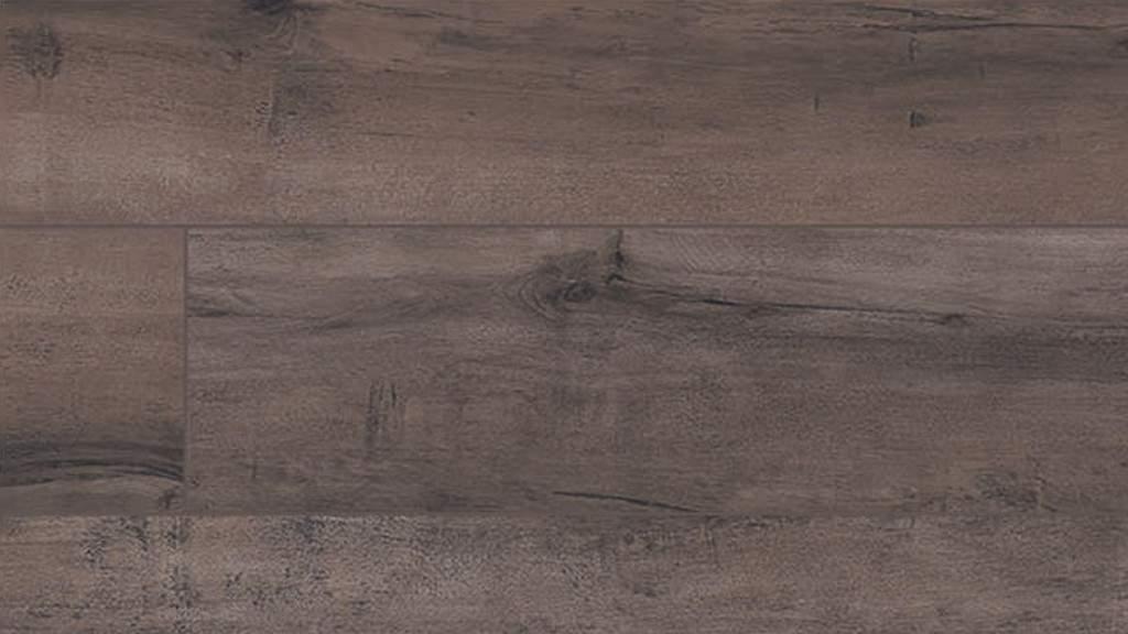 Cortona Ancient Root